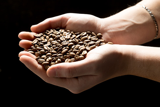 coffee grain selected by Mokarico